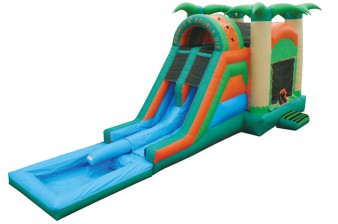 Inflatable Water Slide and Bounce House